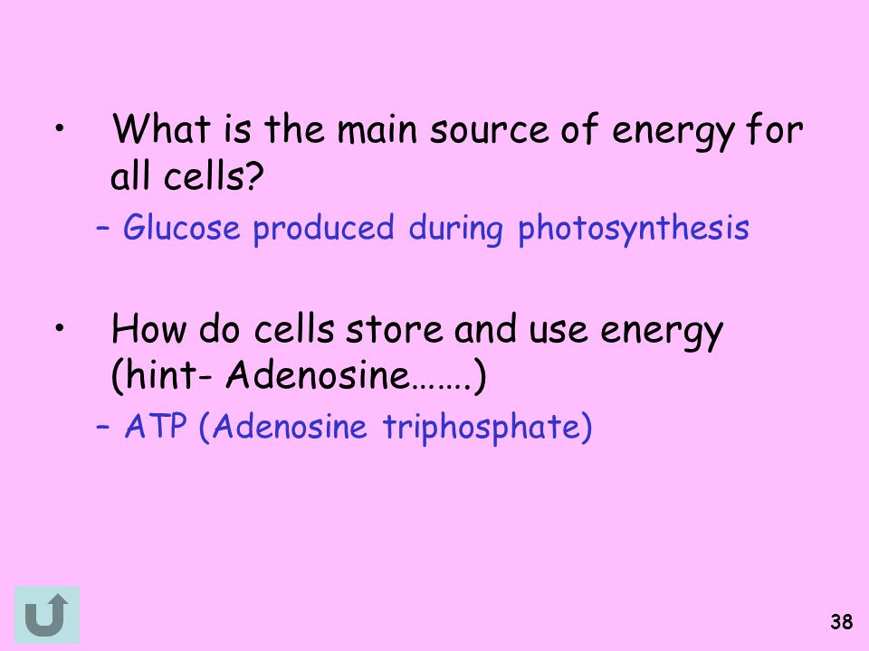 What is the main source of energy for all cells