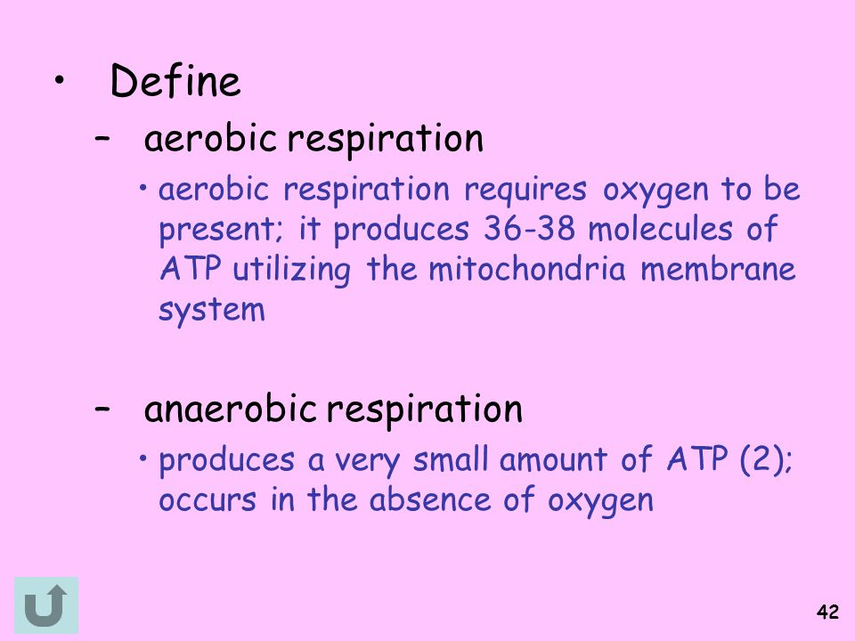 Define aerobic respiration anaerobic respiration
