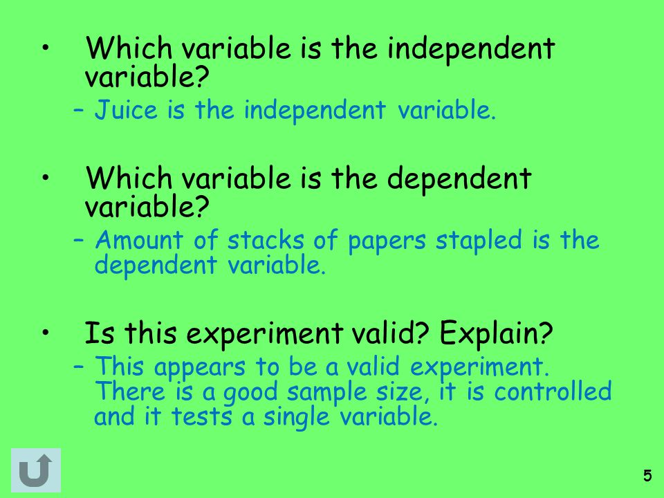 Which variable is the independent variable