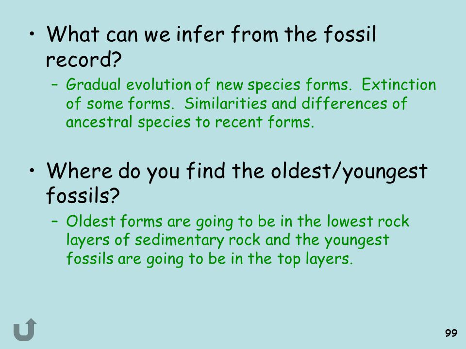 What can we infer from the fossil record