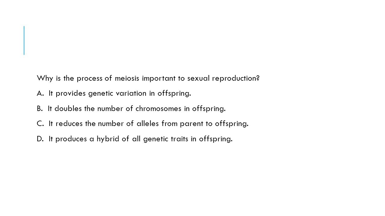 Why is the process of meiosis important to sexual reproduction
