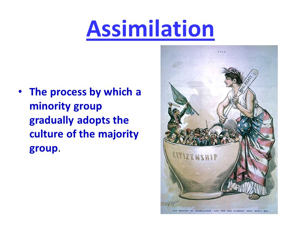 Assimilation The process by which a minority group gradually adopts the culture of the majority group.