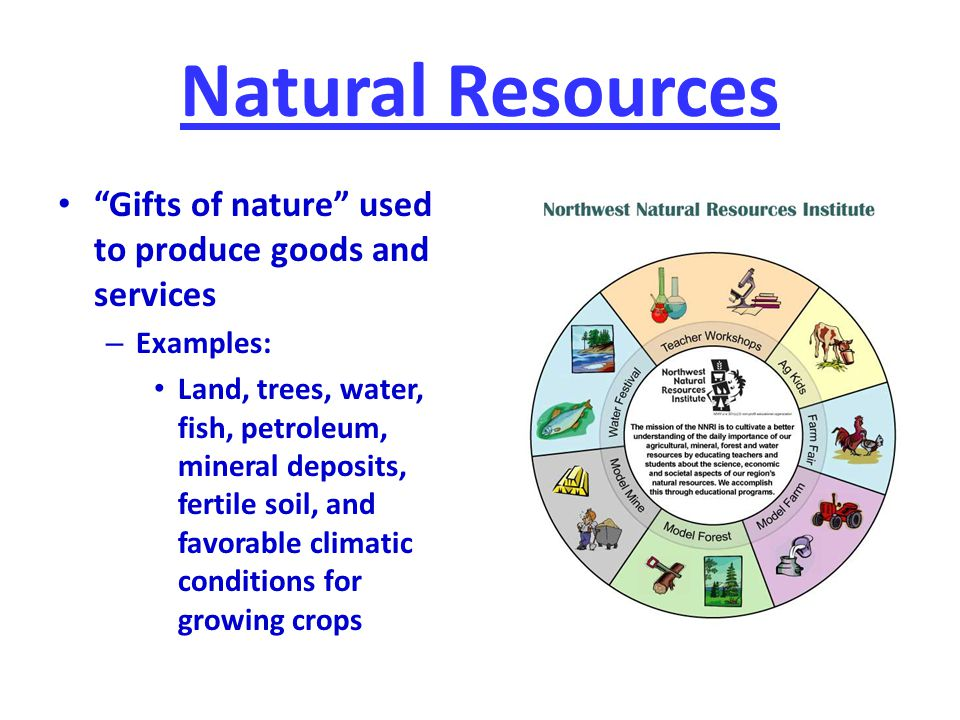 Natural Resources Gifts of nature used to produce goods and services