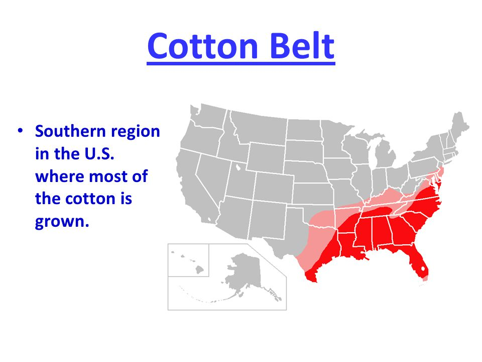 Cotton Belt Southern region in the U.S. where most of the cotton is grown.