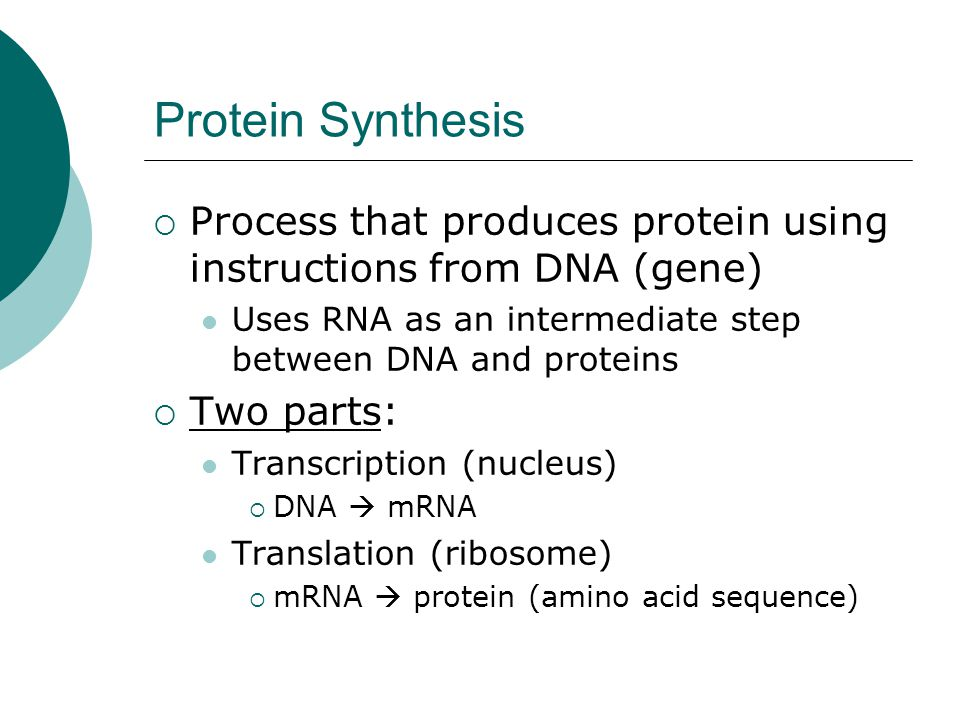 Protein Synthesis Process that produces protein using instructions from DNA (gene) Uses RNA as an intermediate step between DNA and proteins.