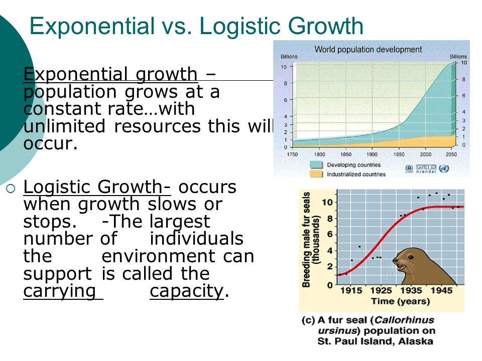 Exponential vs. Logistic Growth