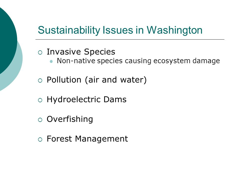 Sustainability Issues in Washington