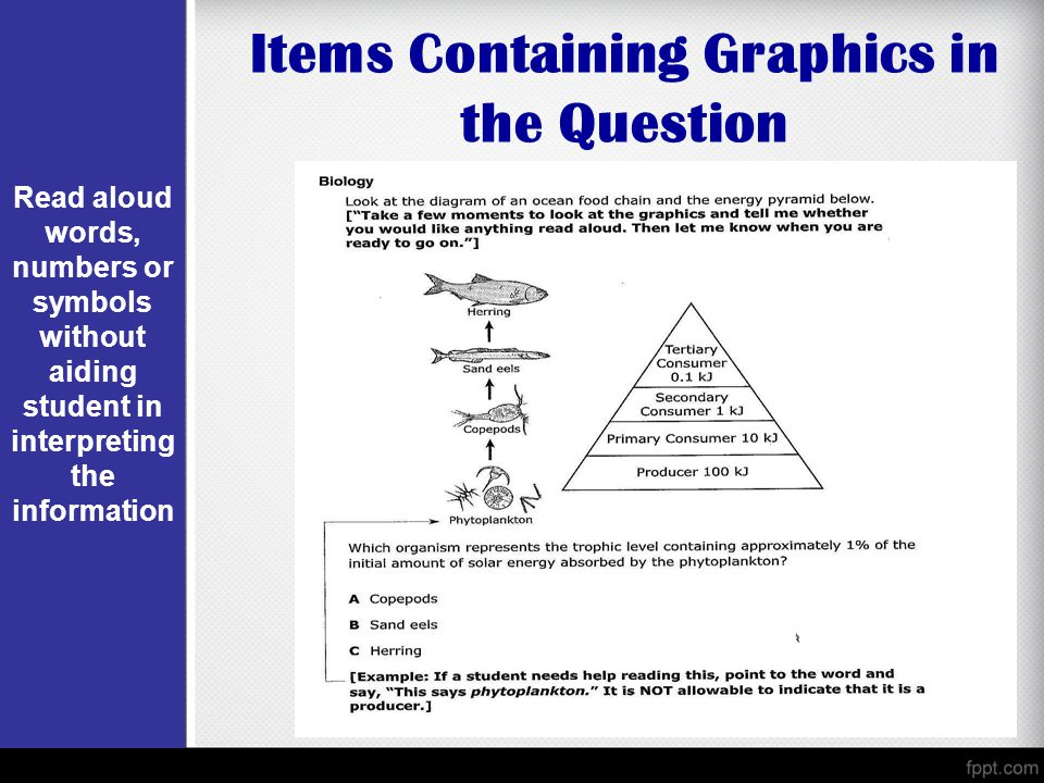 Items Containing Graphics in the Question