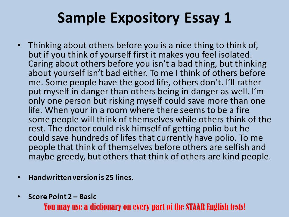 Sample Expository Essay 1