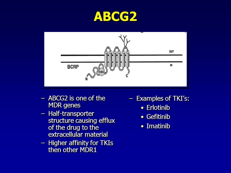 ABCG2 Examples of TKI's: ABCG2 is one of the MDR genes Erlotinib