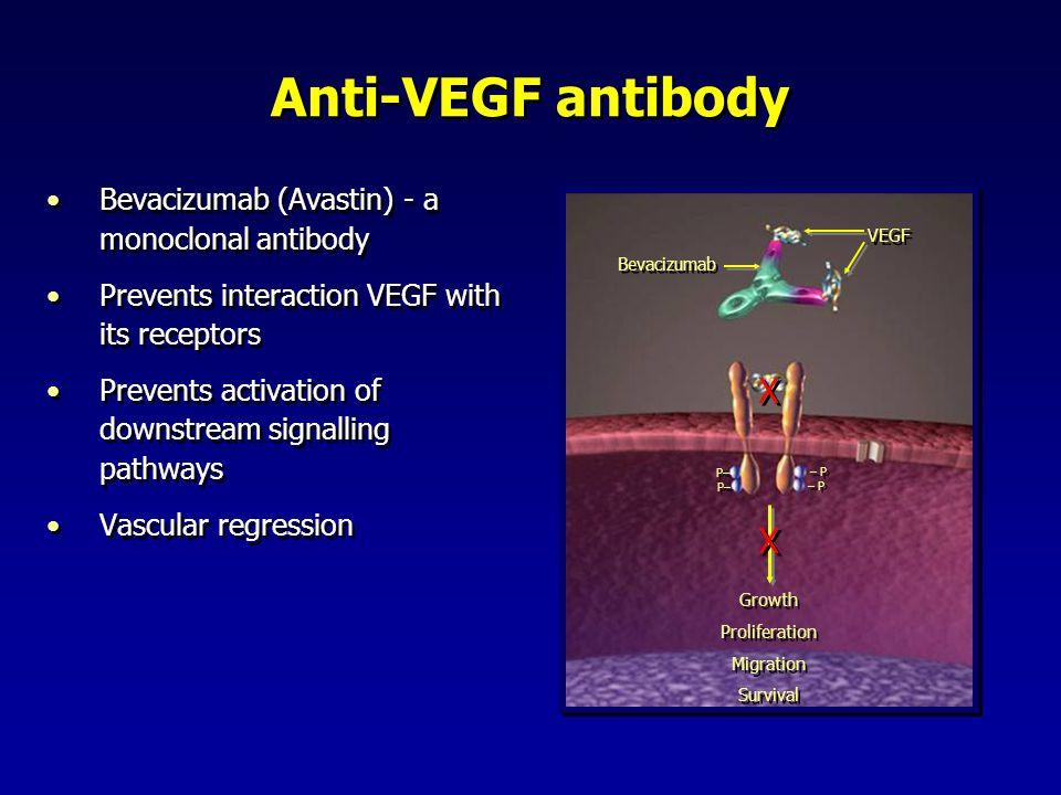 Anti-VEGF antibody X Bevacizumab (Avastin) - a monoclonal antibody
