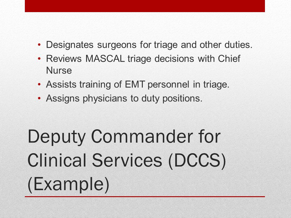 Deputy Commander for Clinical Services (DCCS) (Example)