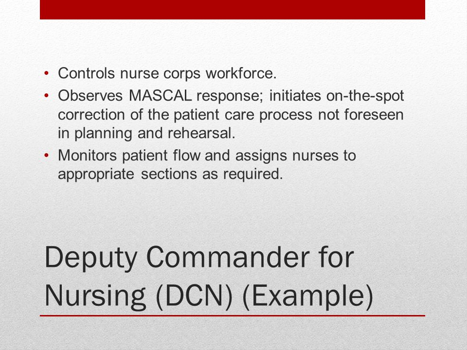 Deputy Commander for Nursing (DCN) (Example)