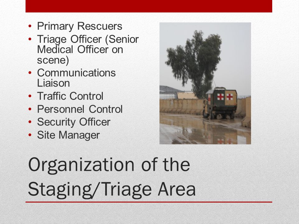 Organization of the Staging/Triage Area