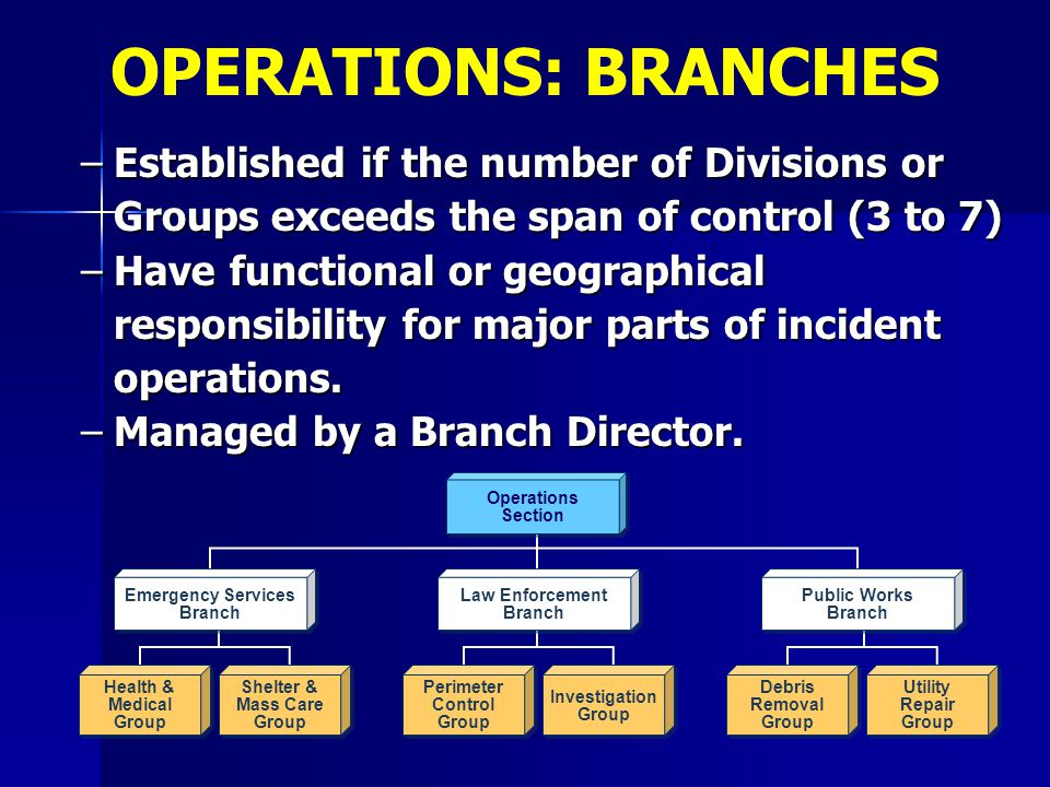 OPERATIONS: BRANCHES Established if the number of Divisions or Groups exceeds the span of control (3 to 7)