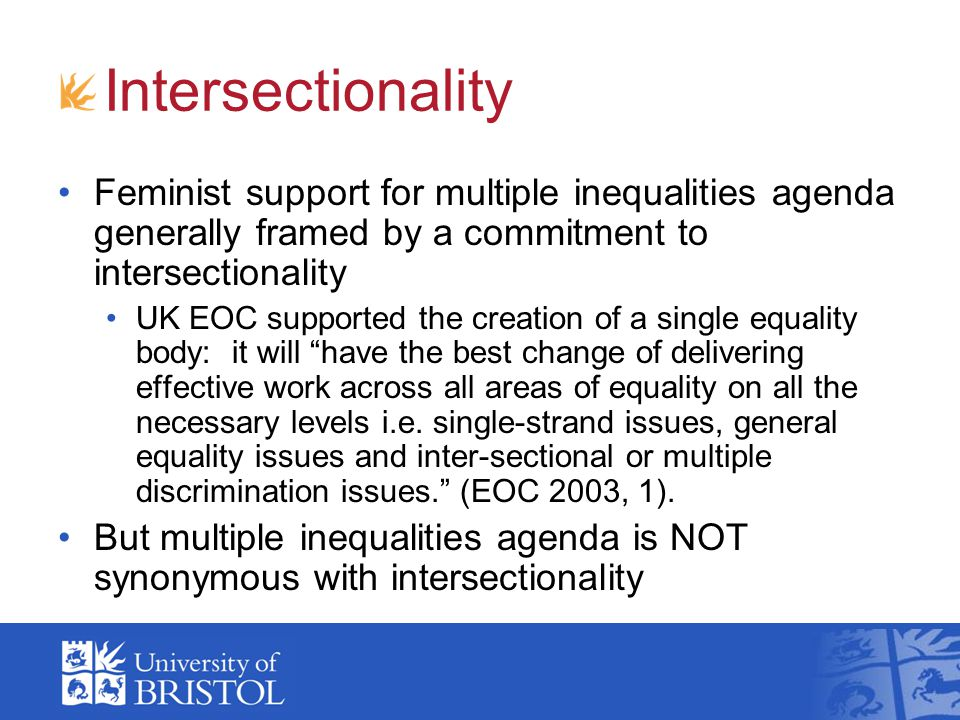 Intersectionality Feminist support for multiple inequalities agenda generally framed by a commitment to intersectionality.