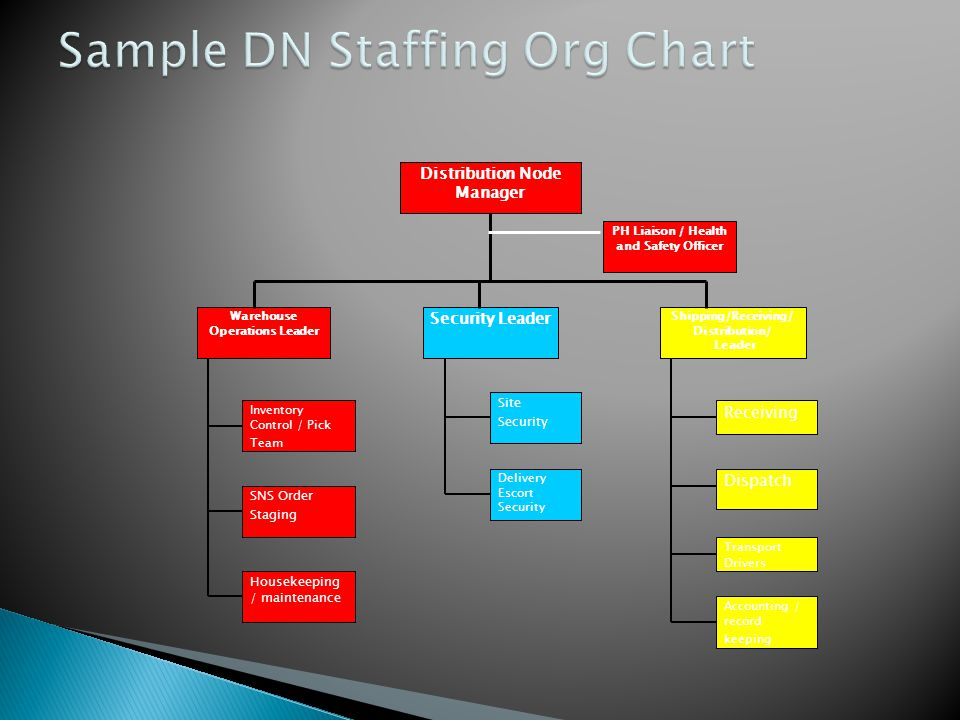 Sample DN Staffing Org Chart