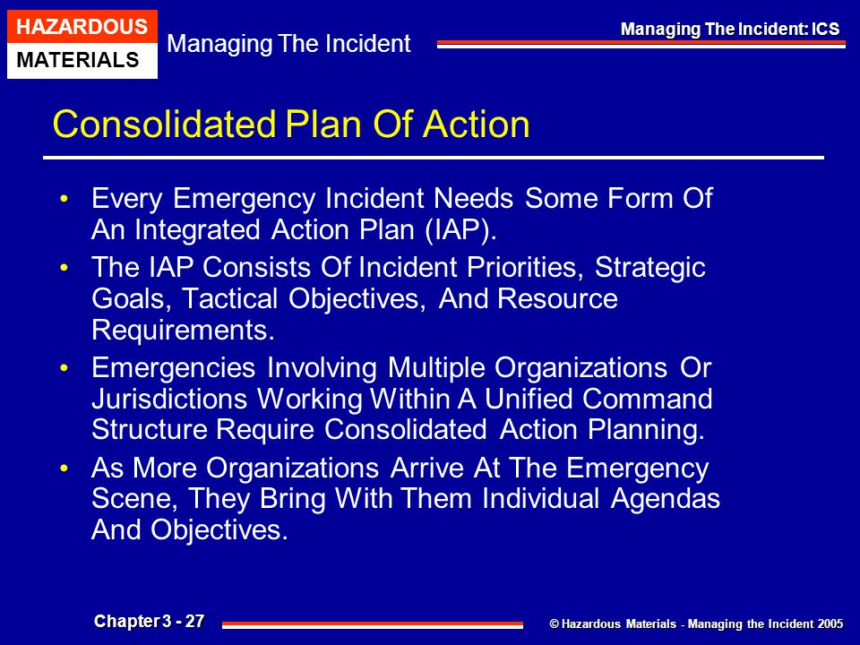 Consolidated Plan Of Action