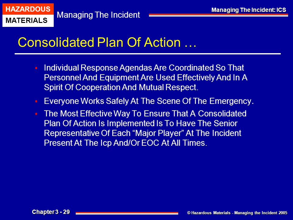 Consolidated Plan Of Action …