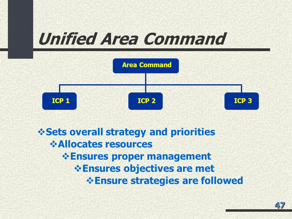 Unified Area Command Sets overall strategy and priorities