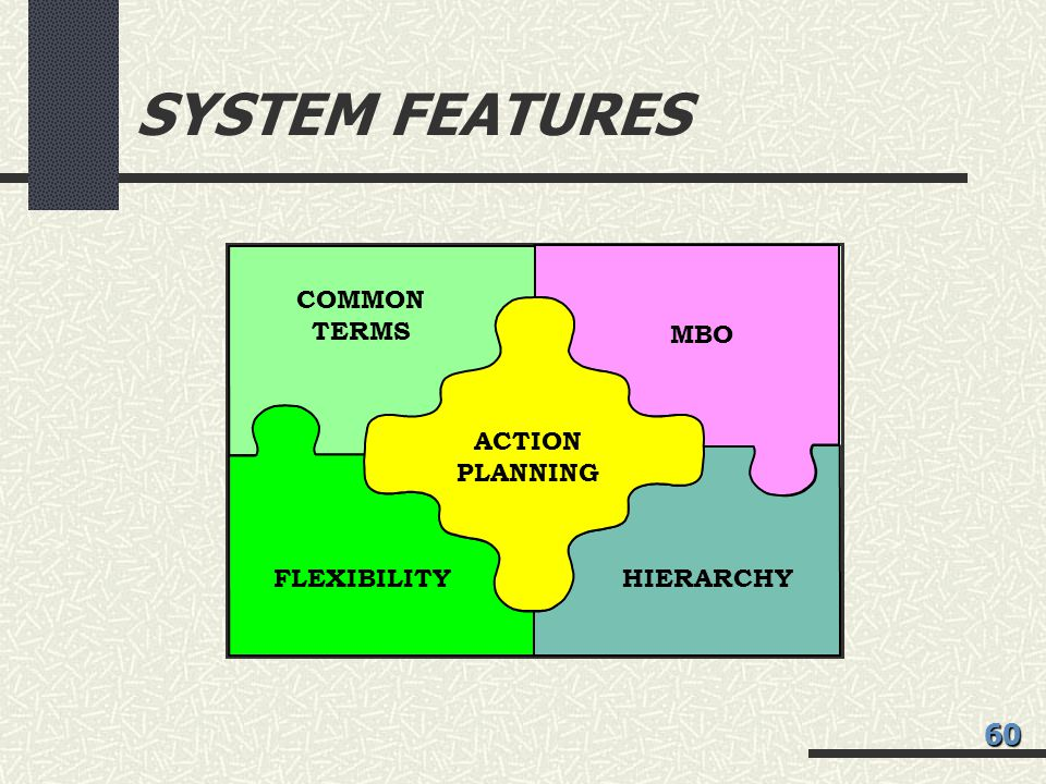 SYSTEM FEATURES 60 COMMON TERMS MBO ACTION PLANNING FLEXIBILITY
