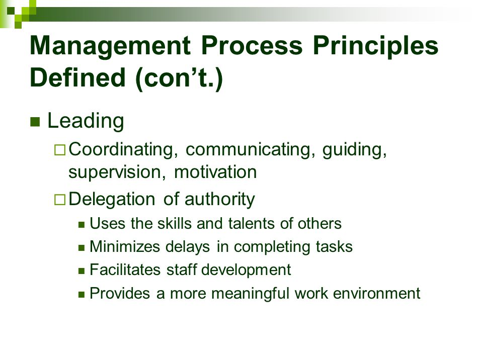 Management Process Principles Defined (con't.)