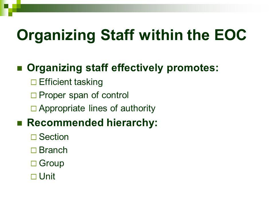 Organizing Staff within the EOC