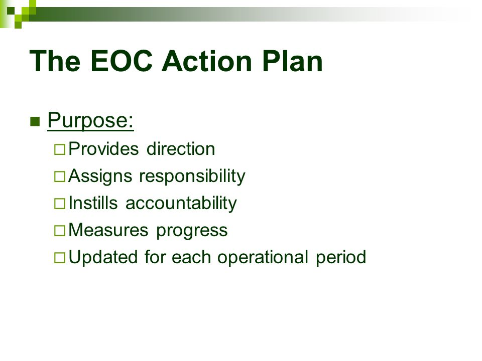 The EOC Action Plan Purpose: Provides direction Assigns responsibility