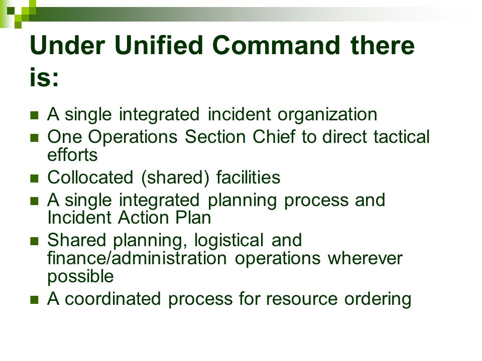Under Unified Command there is: