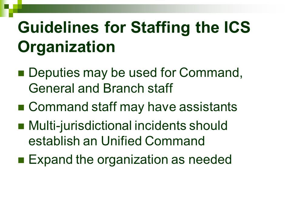 Guidelines for Staffing the ICS Organization