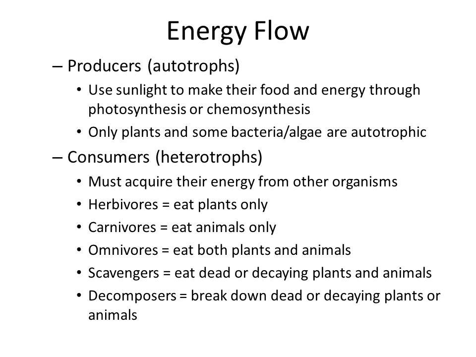 Energy Flow Producers (autotrophs) Consumers (heterotrophs)