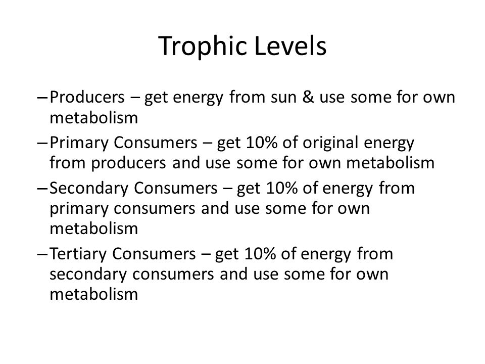 Trophic Levels Producers – get energy from sun & use some for own metabolism.