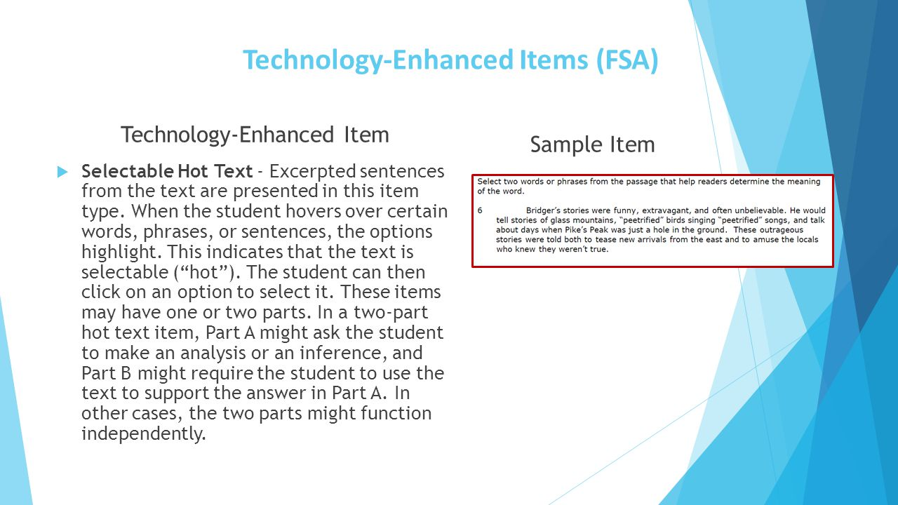 Technology-Enhanced Items (FSA)