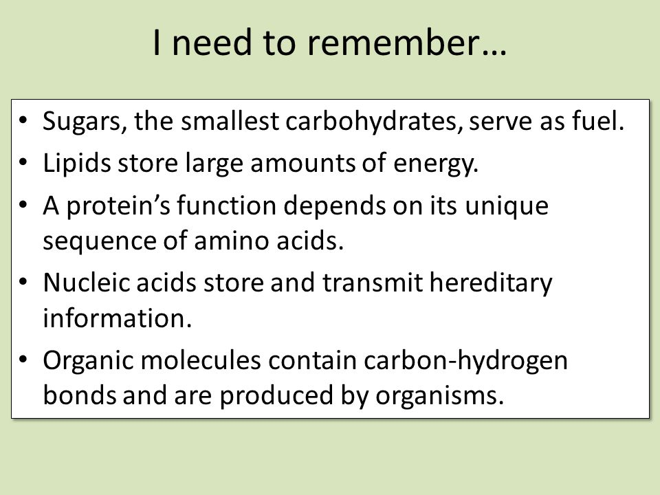 I need to remember… Sugars, the smallest carbohydrates, serve as fuel.