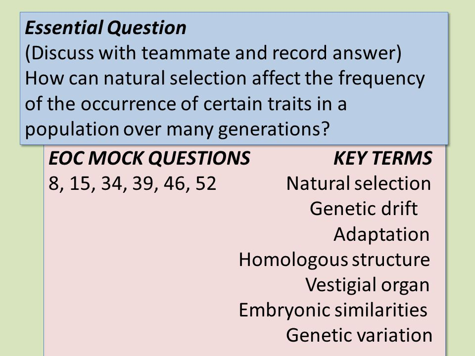Essential Question (Discuss with teammate and record answer)