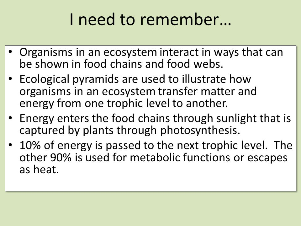 I need to remember… Organisms in an ecosystem interact in ways that can be shown in food chains and food webs.