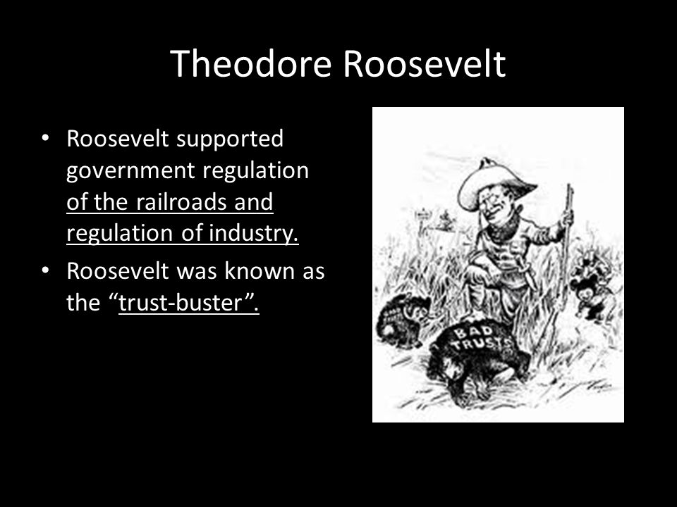 Theodore Roosevelt Roosevelt supported government regulation of the railroads and regulation of industry.