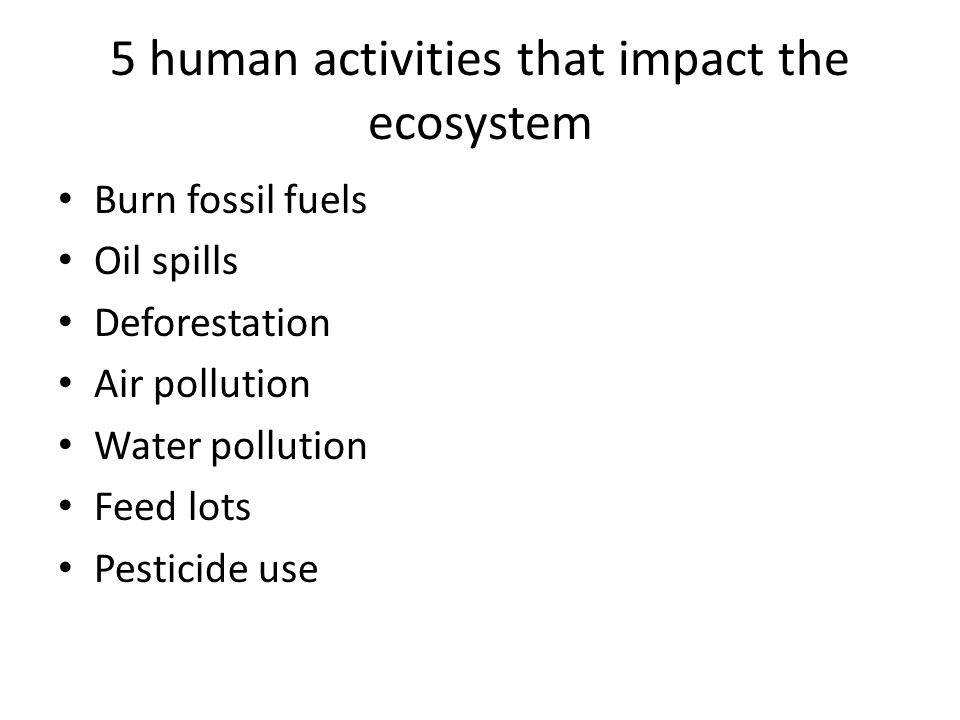 5 human activities that impact the ecosystem
