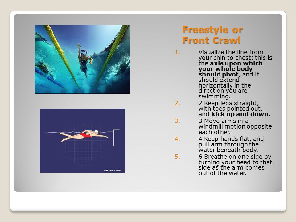 Freestyle or Front Crawl