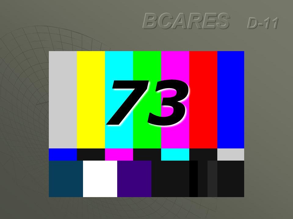 BCARES D-11 73