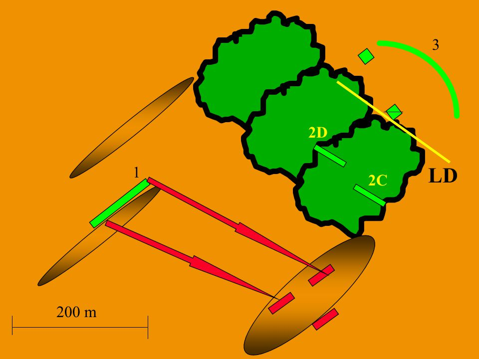 3 2D 1 LD 2C 200 m