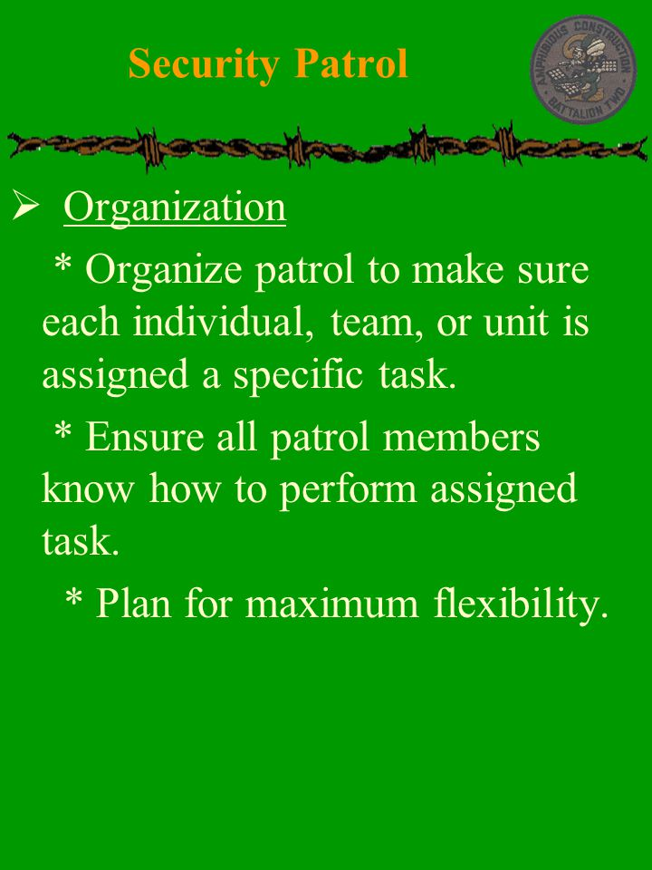 Security Patrol Organization. * Organize patrol to make sure each individual, team, or unit is assigned a specific task.