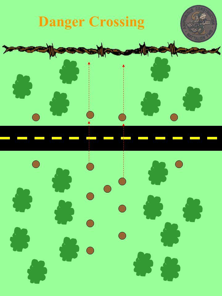 Danger Crossing