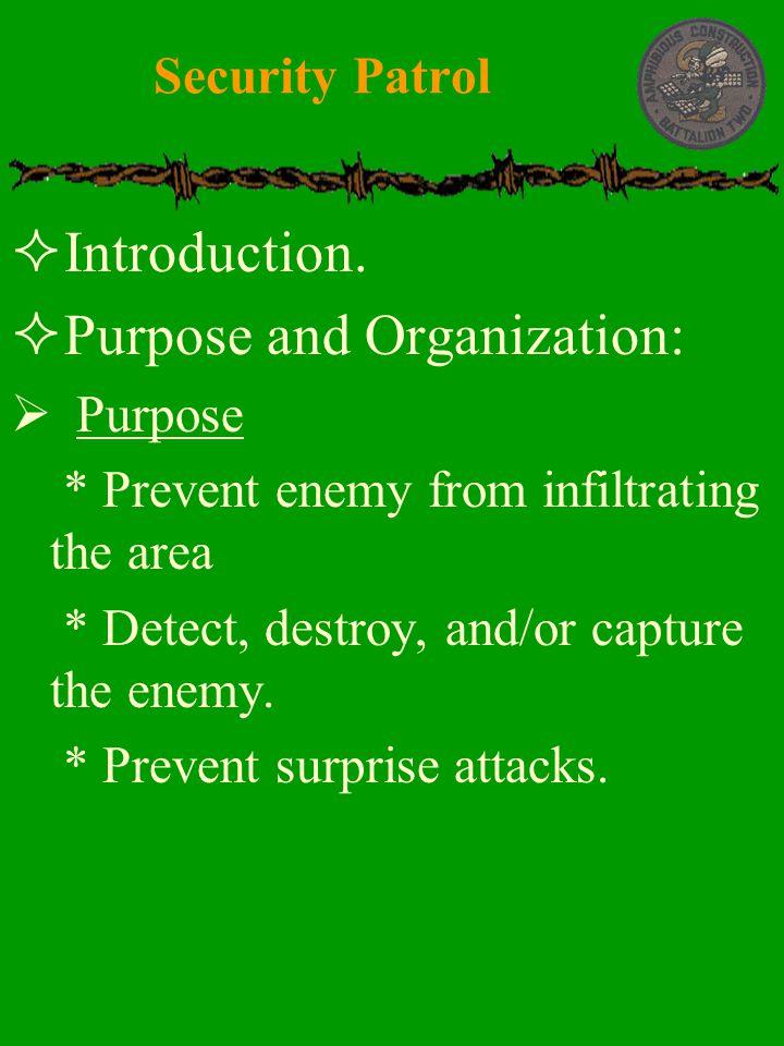 Purpose and Organization: