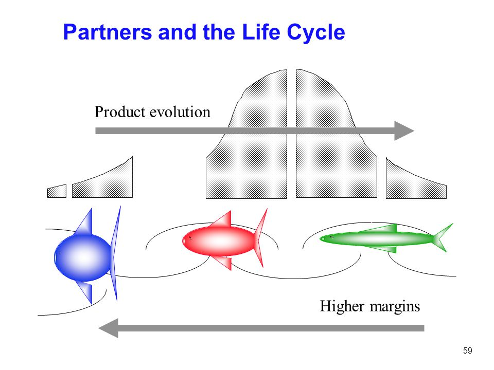 Partners and the Life Cycle