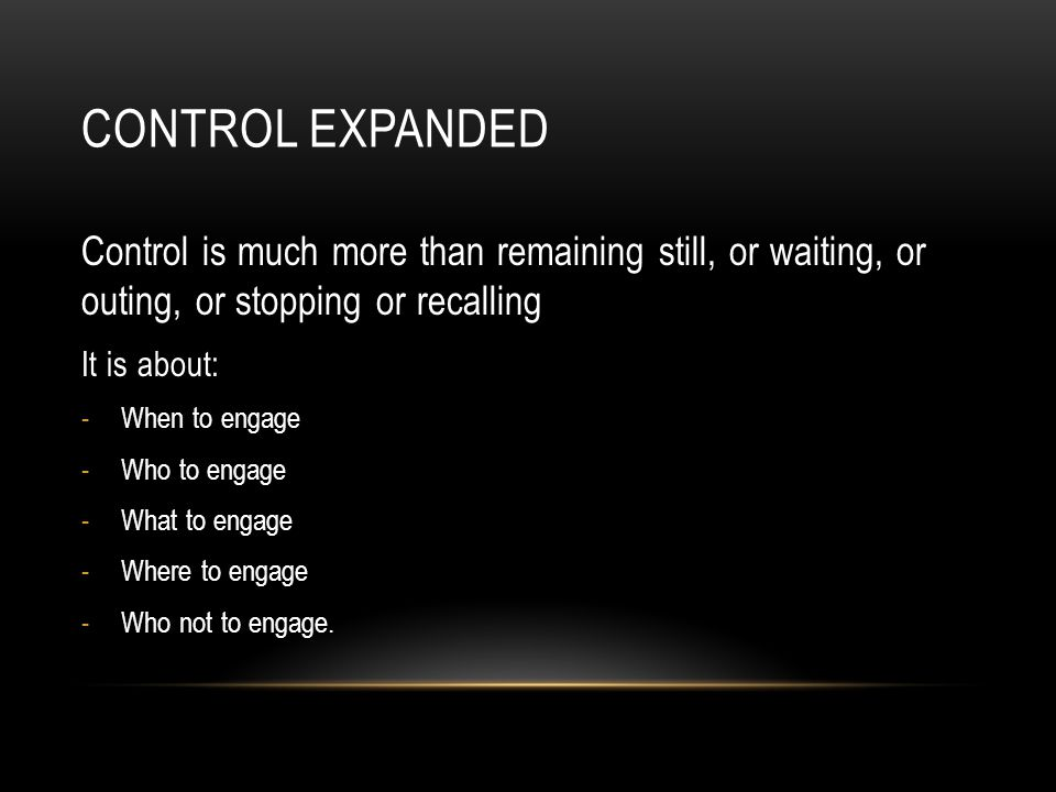 Control expanded Control is much more than remaining still, or waiting, or outing, or stopping or recalling.