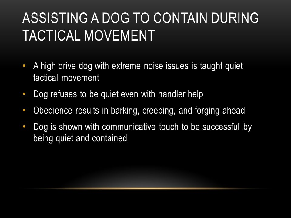 Assisting a Dog To Contain During Tactical Movement