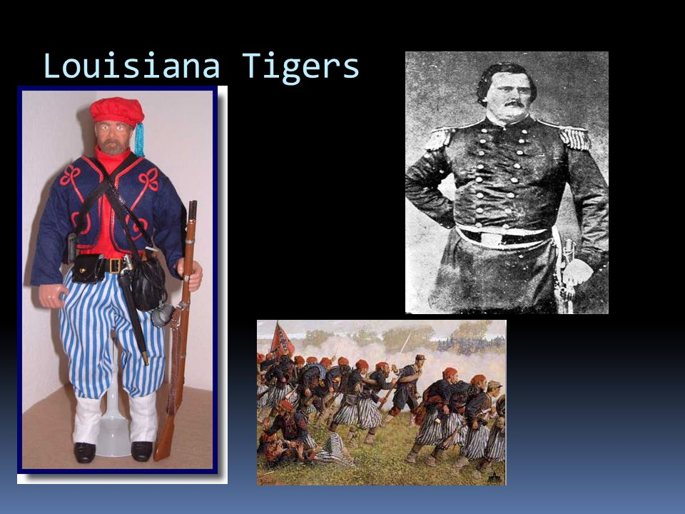 Louisiana Tigers