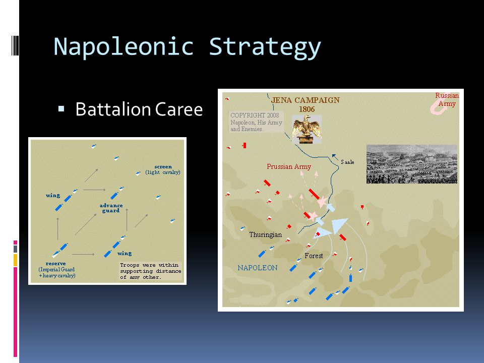 Napoleonic Strategy Battalion Caree