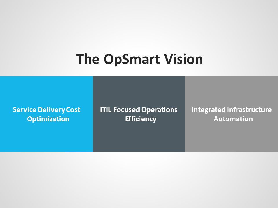 The OpSmart Vision Service Delivery Cost Optimization